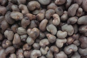 Cashew Nuts Export From Nigeria By Globexia
