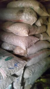 Fresh Ginger Export From Nigeria By Globexia