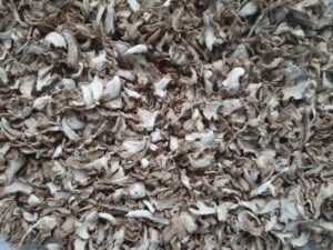 Dry Ginger Export From Nigeria By Globexia