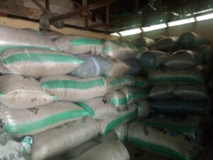 Peanuts Export From Nigeria By Globexia - Groundnuts Export