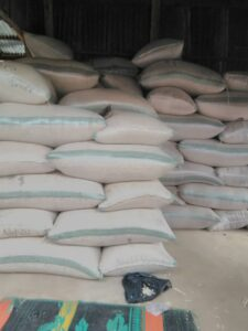 Black Eyed Beans (Cowpea) Export From Nigeria By Globexia