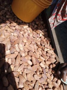 Dried Dates Export From Nigeria By Globexia