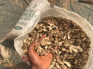 Dried Split Ginger Export From Nigeria By Globexia