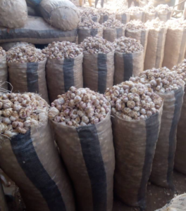 Garlic Export From Nigeria By Globexia