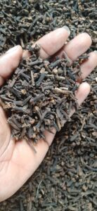 Cloves Export From Nigeria By Globexia