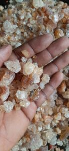 Gum Arabic Export From Nigeria By Globexia